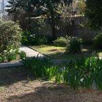 aménagement du parc privée avec allées bétonnées facilitant le deplacement