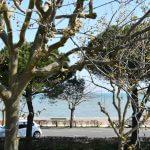 front de mer face aux logis de simon
